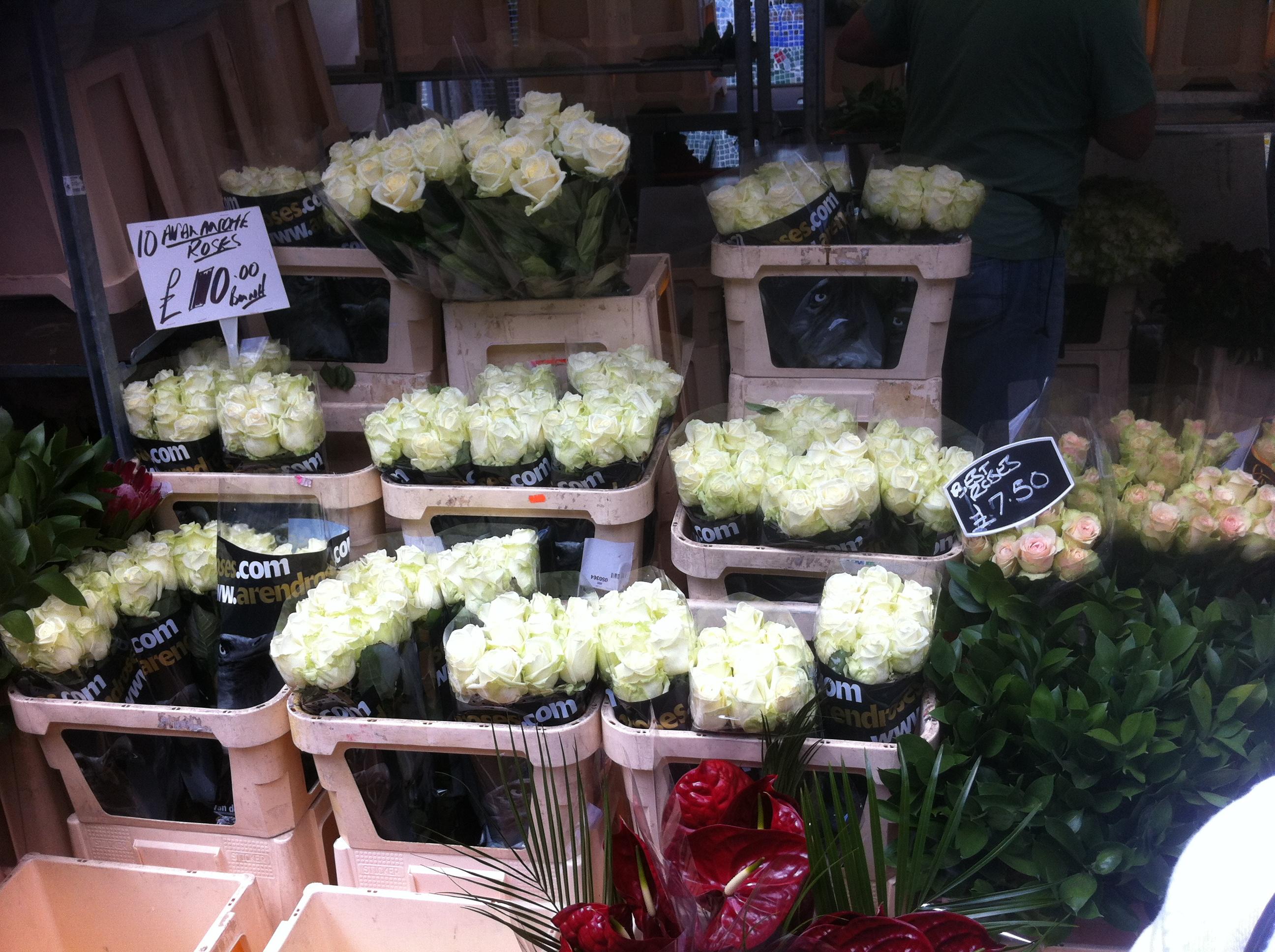 Columbia Road Flower Market Pleasure And Payne