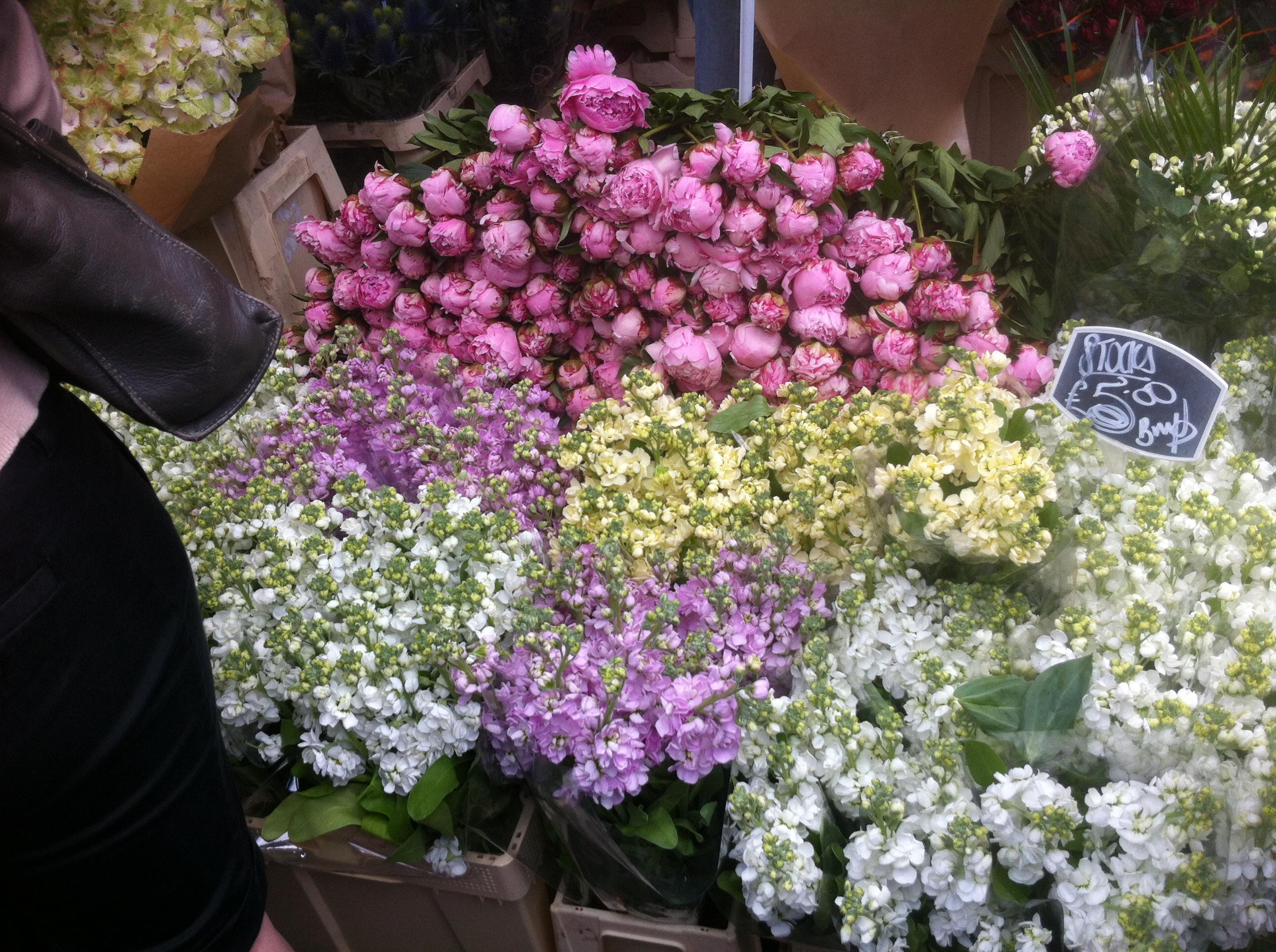 Columbia road flower market pleasure and payne img3304 mightylinksfo